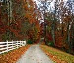 fall-Ashland-KY_thumb