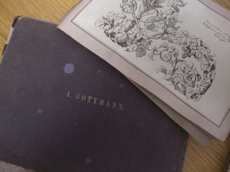 A. Gottman, 1866