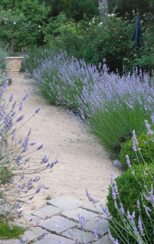 11-trouvais garden1