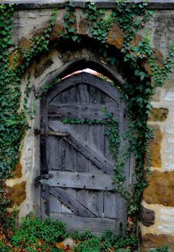 1-tumblr fresh as a daisy gate