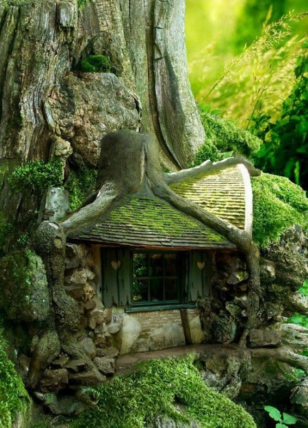 3-tumblr tree house, looking for rainbows in the moonlight