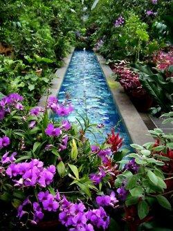 5-tumblr fresh as a daisy pool