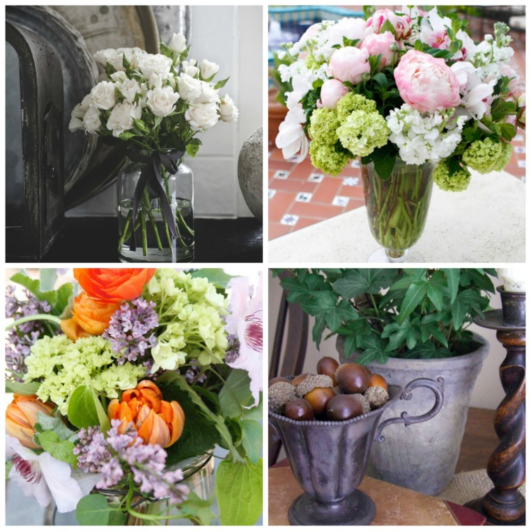 fresh flowers and plants