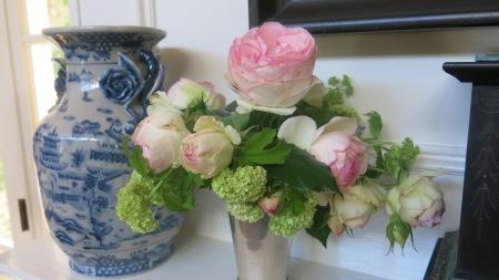 Eden rose, mantle