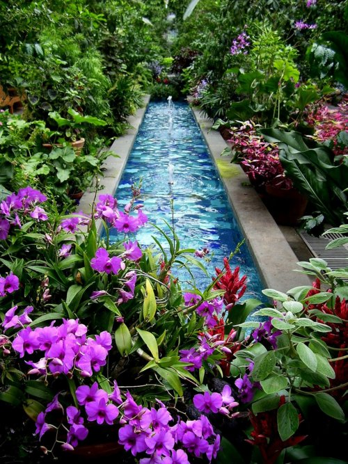 Garden, Home and Party, reflecting pool
