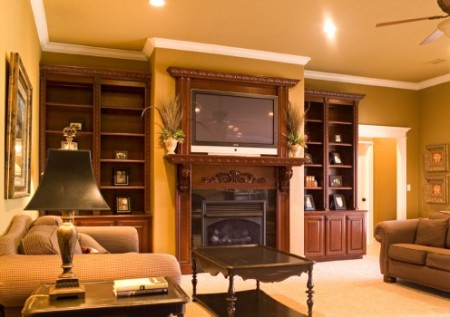 Garden, Home and Party, home theater