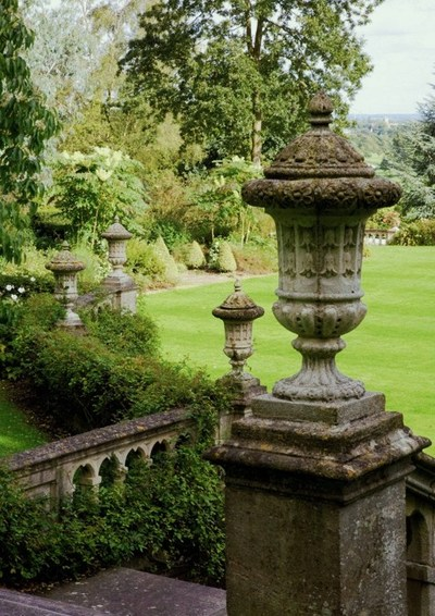 Garden, Home and Party: Moss in the garden