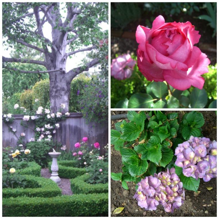 Garden, Home and Party: Garden inspiration