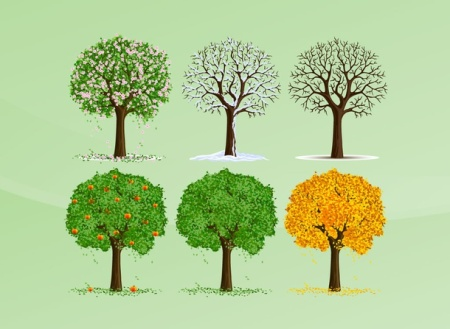 Garden, Home and Party: Arbor Day