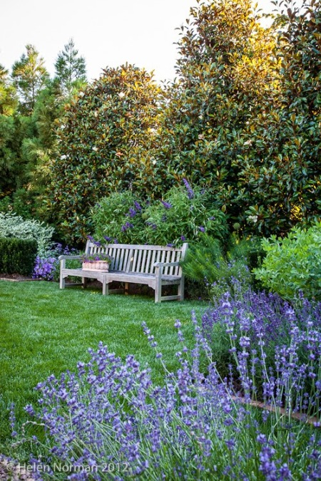 Garden, Home and Party: Garden inspiration