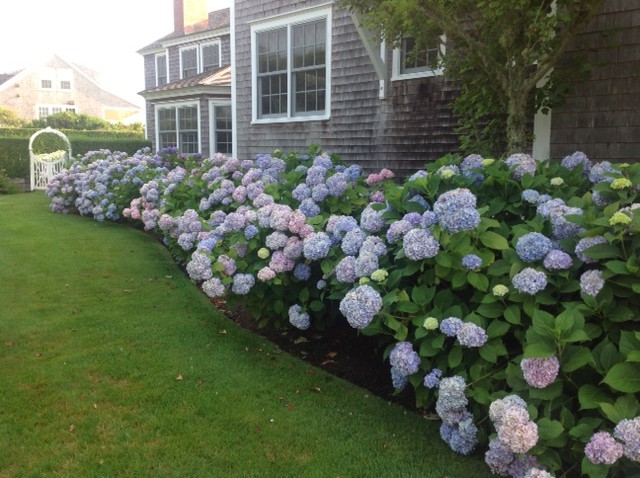 Garden, Home and Party: Summer's bounty