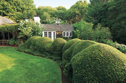 Uncategorized   Garden, Home & Party