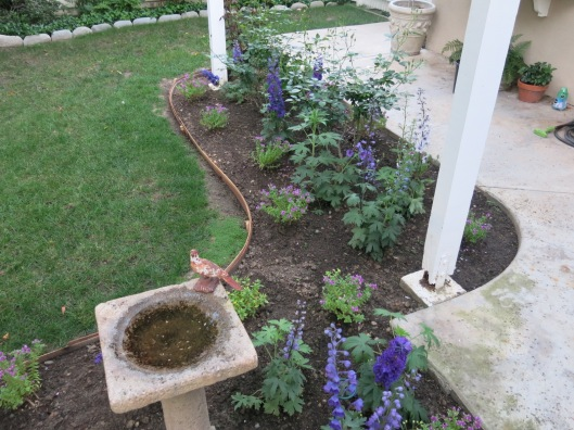 Garden, Home and Party: Patio garden, finally
