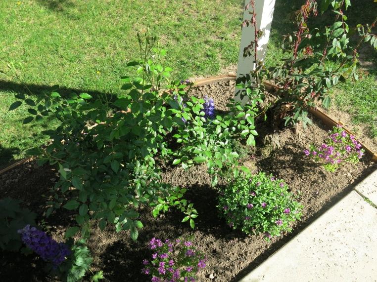 Garden, Home and Party: garden patio, finally