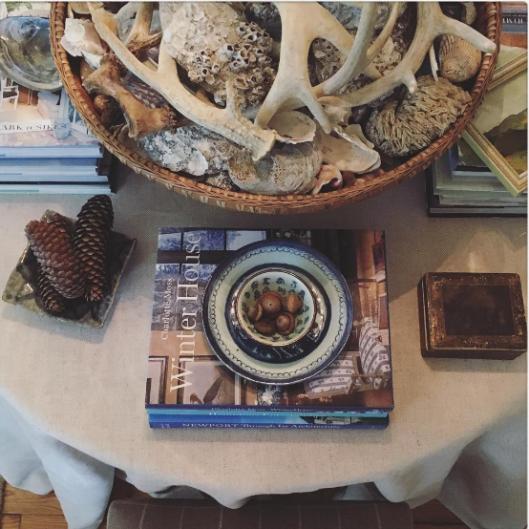 acorn and shells